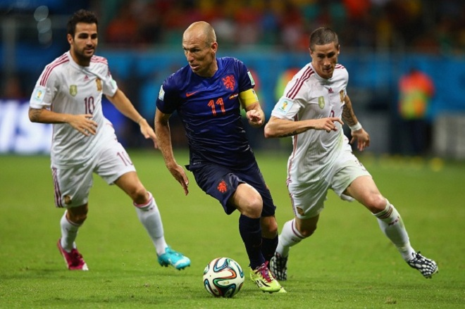 Robben 2014